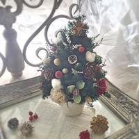 プリザーブドのクリスマスツリーレッスン - *kiko's  diary* 京都でプリザやリースなどの花雑貨とお庭のお店[Breath Garden]をしています!