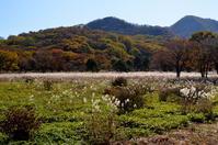 秋の旅行①榛名山 - つれづれ日記
