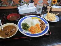 スリランカ レストラン - ちび造 手作り 木工・鉄工 植木鉢 棚