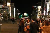 姫路観光を考える@姫路に欲しい本格的城下町、白鷺の城姫路城は夜になると最高潮の美しさ - 藤田八束の日記