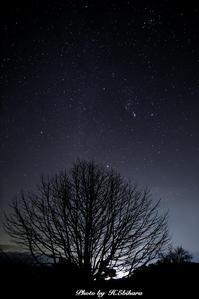 星のきらめき - 写真家 海老原 勇人
