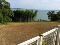 散歩道 - 湖畔に暮らすミュージシャンと愛犬ハンク/ターシャの日記