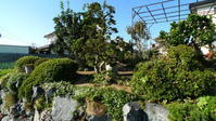 仲間の家の庭の手入れ - 空の旅人