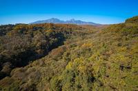 紅葉情報です - オーナーズブログ・八ケ岳南麓は晴れています!