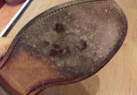 カビが生えた時…あなたならどうしますか?(後編) - 表参道駅徒歩1分 M.モゥブレィ公式ショップ  青山エリアで靴磨き、ブーツのお手入れができる店!