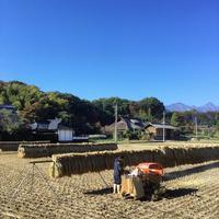脱穀2 - 宇宙農民ブログ
