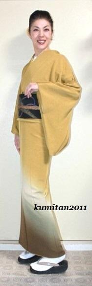 今日の着物コーディネート♪(2016.11.11)~付下げ着物&袋帯編~ - 着物、ときどきチロ美&チャ美。。。リサイクル着物ハタノシイナ♪