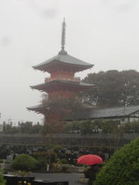日本一の高さを誇る三重塔 - 活花生活(2)