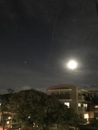 牡牛座の満月、そしてスーパームーン。 - プランテプラネットのブログ。ここからもうちょっと