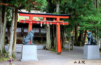 高野山 それは尊重し合うことから 神仏習合 - Miwaの優しく楽しく☆