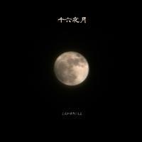 十六夜月 - flower living
