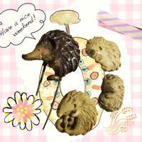 オーブン陶土✨ - ヨウル☆プッキのへんチョコ日記