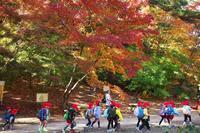 神戸森林植物園 ⑥ 人のいる風景 - グル的日乗