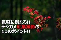 気軽に撮れる!デジカメで紅葉撮影の10のポイント! - 田舎暮らしの写真家KENZO