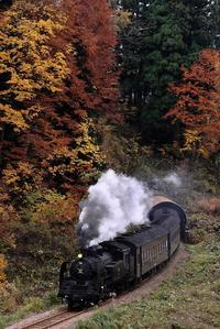161114 飯山線・上越線 - コロの鉄日和newver