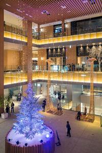 KITTE名古屋のクリスマスツリー - 千種観測所