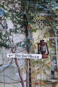 ハーバルハウスさんの冬支度 - ゆきなそう  猫とガーデニングの日記