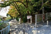 山麓リボンの道(9) ~高取山のふもと~ リベンジ編 - 案山子の写真紀行