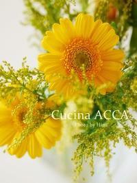11月のシフォン体験レッスンでした♪ - Cucina ACCA