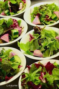 地物野菜のサラダ - ハーブガーデン便り
