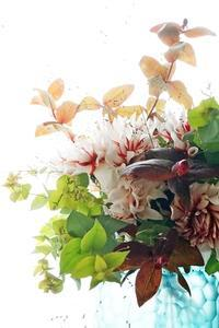 ダリアのラララに魅せられて♪ - お花に囲まれて