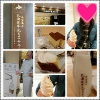 南蛮菓子北海道牛乳カステラ@新千歳空港♪ - コグマの気持ち