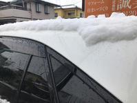 雪ですが、積もらず良かった! - 奇跡の日々 ~誠実社~