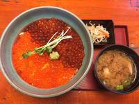 金沢(八日市出町):竹乃家 「山盛りいくら丼」 - ふりむけばスカタン