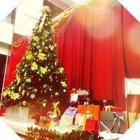 We wish a merry christmas - 赤坂・ニューオータニのヘアサロン大野ザメイン店ブログ