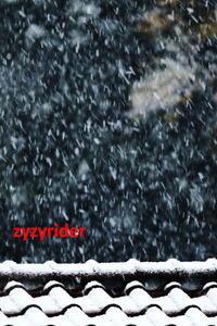 11月の大雪(乱舞) - ジージーライダーの自然彩彩