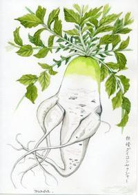 妖怪ダイコンヤクシャー - がちゃぴん秀子の日記