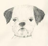 スケッチ・犬の練習 - vogelhaus note