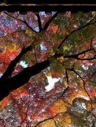 毎朝お世話になってる 今宮神社の歴史に触れよう☝️ - 歩け おっさん!