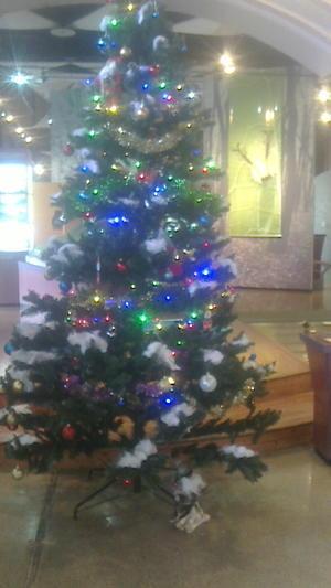 クリスマスイベント - 自然とオオムラサキに親しむ会通信 里山再生