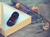11月のお風呂の日は『ユーカリ精油』をプレゼント♪ - tecoloてころのブログ