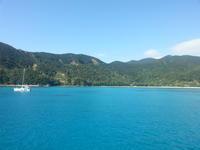 奄美大島&加計呂麻島へ52(一緒に潜ったダイバー)。 - 青い海と空を追いかけて。