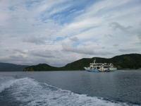 奄美大島&加計呂麻島へ53(フェリーかけろま&加計呂麻バス)。 - 青い海と空を追いかけて。