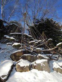 """初冬の小樽公園 - ときどきの記 小樽の出版社""""ウィルダネス""""のブログ"""