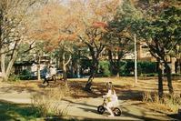 Snap No139 - 東京Shy 写歩く