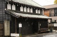 11月の初雪の市内の雪景色・・・1 - 自然のキャンバス