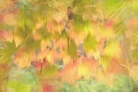 八千穂高原・松原湖2 - 光 塗人 の デジタル フォト グラフィック アート (DIGITAL PHOTOGRAPHIC ARTWORKS)