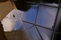 冷たい雨 - 「美は観る者の眼の中にある」
