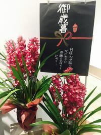 お歳暮に。。。 - ~ Flower Shop D.STYLE ~ (新所沢パルコ・Let's館1F)