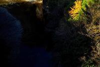 針畑大橋より、なごり紅葉・・・雨で6℃の朝に  朽木小川・気象台より - 朽木小川・気象台より、高島市・針畑郷・くつきの季節便りを!