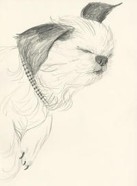 スケッチ・犬の練習「お昼寝」 - vogelhaus note