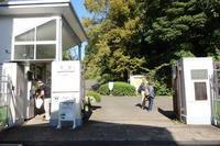 文京区をぶらぶら その5~東京大学 小石川植物園 - 「趣味はウォーキングでは無い」