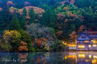 湯布院・金鱗湖 - 撃沈 Photo Diary