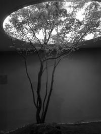 何必館・京都現代美術館 - haze's photos