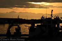 富山散歩~県西部271~氷見漁港「活気溢れる朝セリ」 - Tomの一人旅~気のむくまま、足のむくまま~