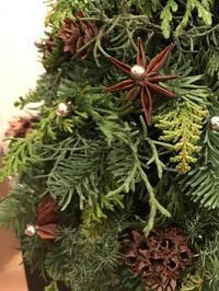 今年のツリーはどこにもない…? - LaPetiteCloche プチクローシュ
